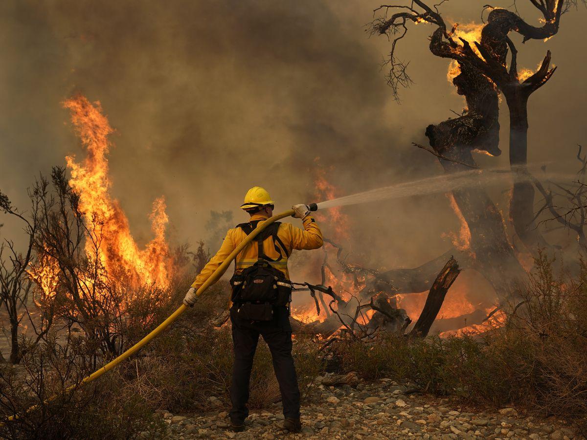 largest california wildfire threatens marijuana growing area largest california wildfire threatens