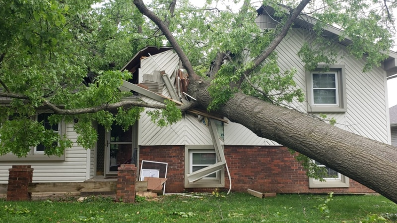 Storm surveyors with the National Weather Service say strong straight line winds of...