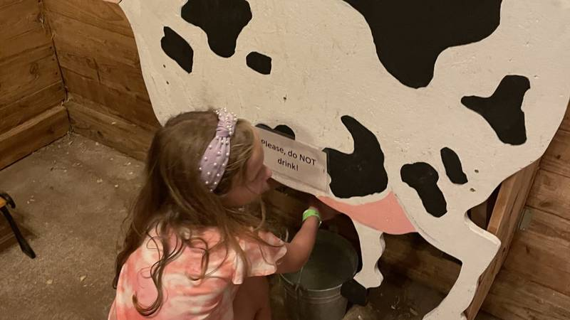 Country Roads Family Fun Farm is a play based, indoor/outdoor activity center for all ages.