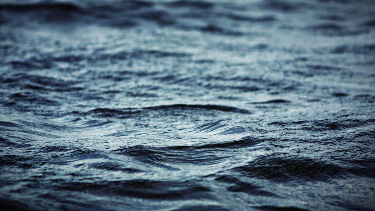 Barre man dies in apparent drowning.