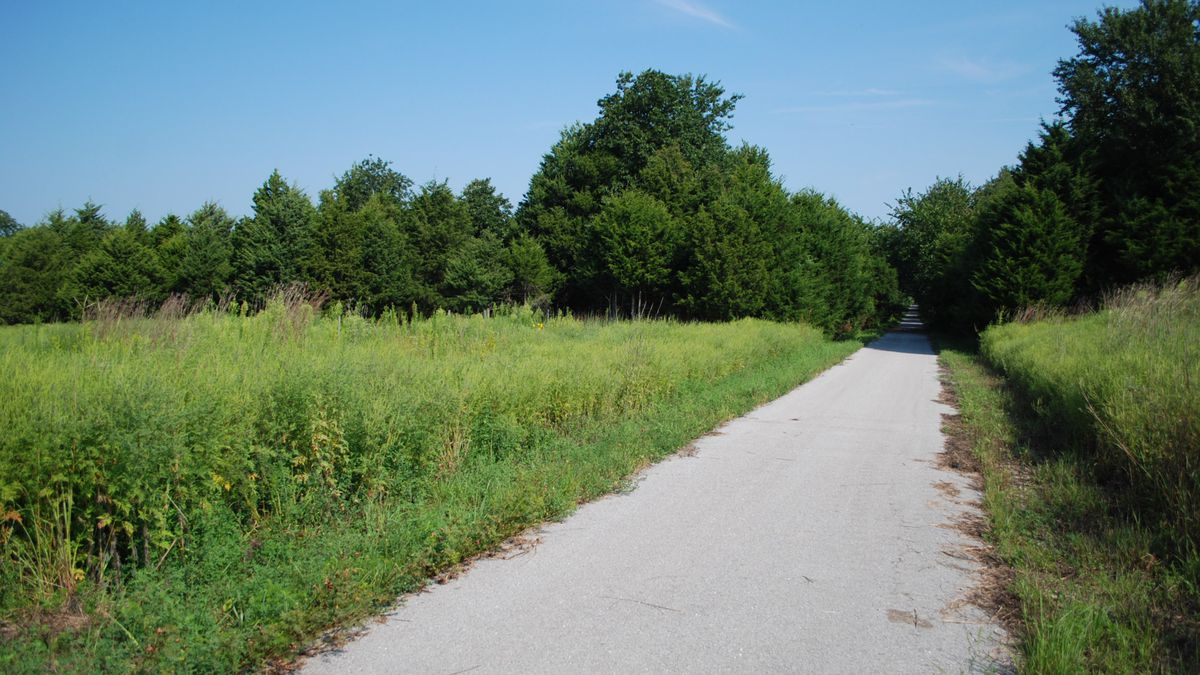 The Frisco Highline Trail is Missouri's second-longest rail-trail (a re-purposed railroad line) that runs from Springfield all the way to Bolivar.