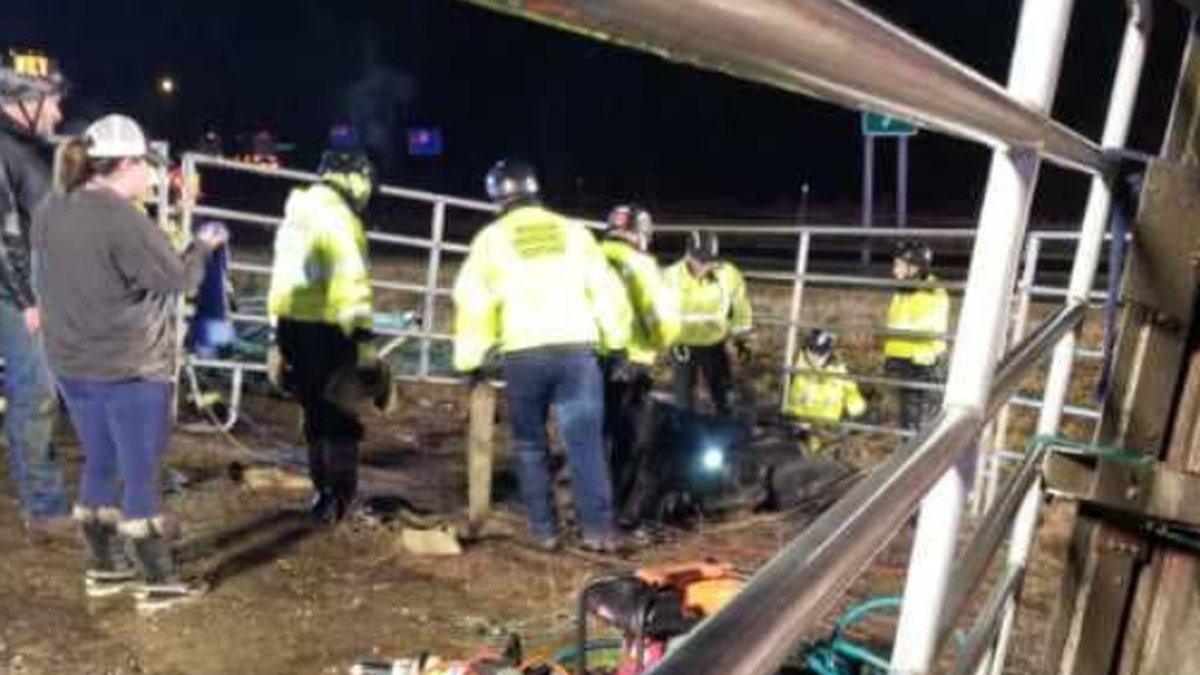 Thirteen horses were killed or euthanized after a tractor-trailer rolled over Sunday night on...