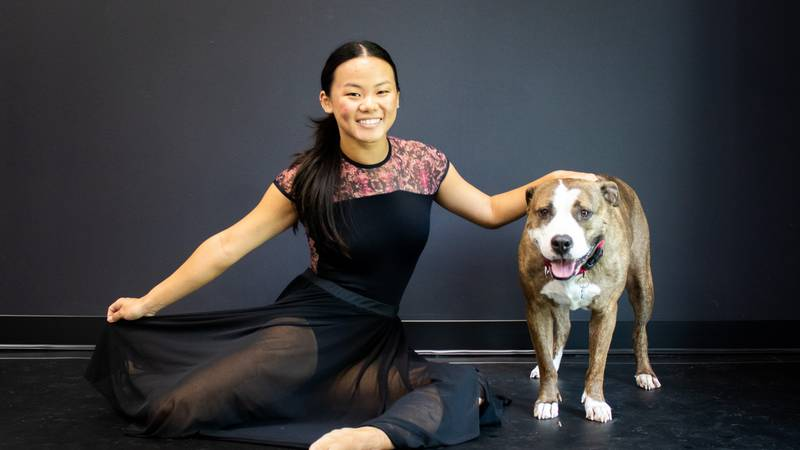 A local dance studio is partnering with Rescue One to get more dogs adopted