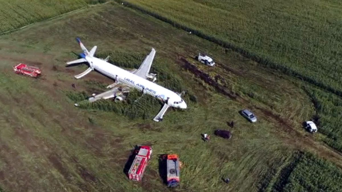 In this video grab provided by the RU-RTR Russian television, a Russian Ural Airlines' A321 plane is seen after an emergency landing in a cornfield near Ramenskoye, outside Moscow, Russia, Thursday, Aug. 15, 2019. Russian Ural Airlines' A321, carrying 226 passengers and a crew of seven, collided with a flock of birds while taking off Thursday rfom Moscow's Zhukovsky airport. Russian health authorities said that 23 people, including five children, have been hospitalized with injuries. (RU-RTR Russian Television via AP)