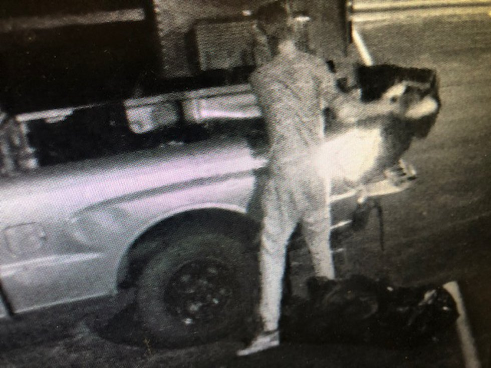 Security video shows a man throwing three bags of garbage out of his truck.