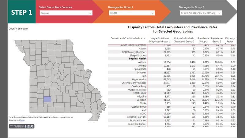 Missouri Hospital Association Health Equity Dashboards