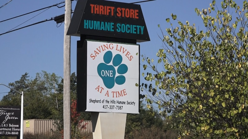 Humane Society director Jayme Tabuchi says the thrift store even invested in cameras outside...