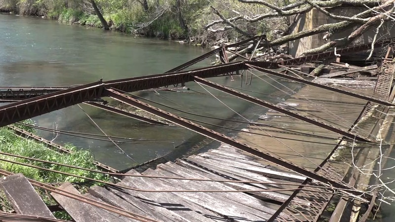 an old tree fell on the historic Haskins bridge causing it to collapse into the water