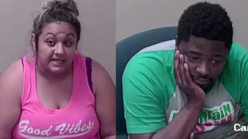 Ozarks couple accused of stealing from pet lovers.