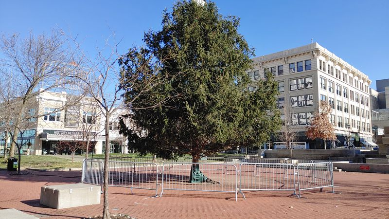 Christmas tree on the square vandalized
