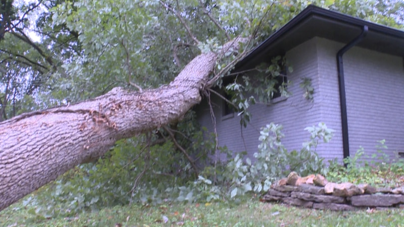 A storm overnight Sunday caused a large oak tree to come crashing down on the side of a house...