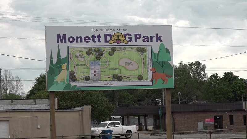 When it rains, it pours, and if you're in downtown Monett, it floods, making it challenging to...