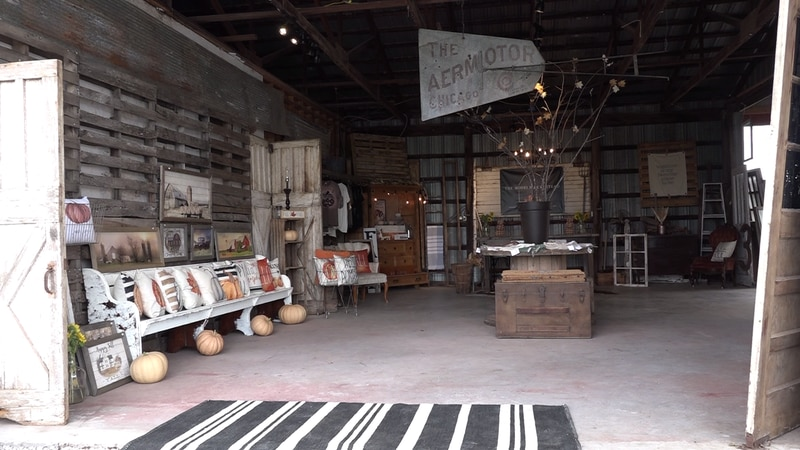 The Modern Homestead Fall Harvest Company opened just last year and is already experiencing a...