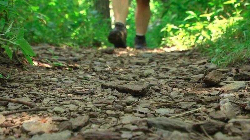 Hiking along the Appalachian Trail in Virginia